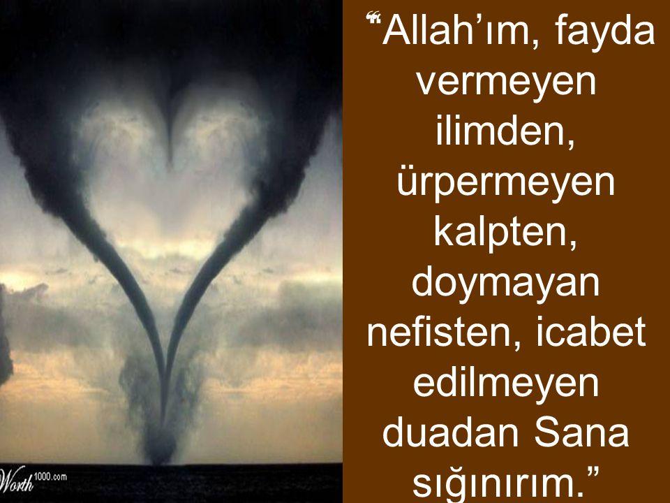""""""" """"Allah'ım, fayda vermeyen ilimden, ürpermeyen kalpten, doymayan nefisten, icabet edilmeyen duadan Sana sığınırım."""""""