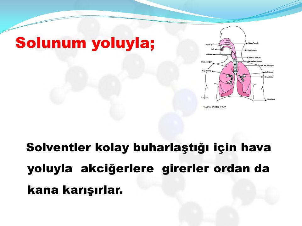 Solunum yoluyla; Solventler kolay buharlaştığı için hava yoluyla akciğerlere girerler ordan da kana karışırlar. www.nkfu.com
