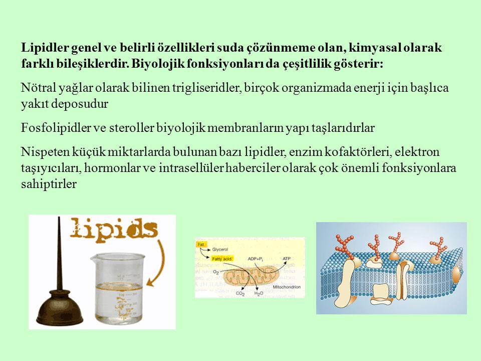 Lipidler genel ve belirli özellikleri suda çözünmeme olan, kimyasal olarak farklı bileşiklerdir. Biyolojik fonksiyonları da çeşitlilik gösterir: Nötra