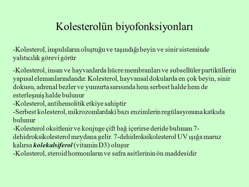 Kolesterolün biyofonksiyonları -Kolesterol, impulsların oluştuğu ve taşındığı beyin ve sinir sisteminde yalıtıcılık görevi görür -Kolesterol, insan ve