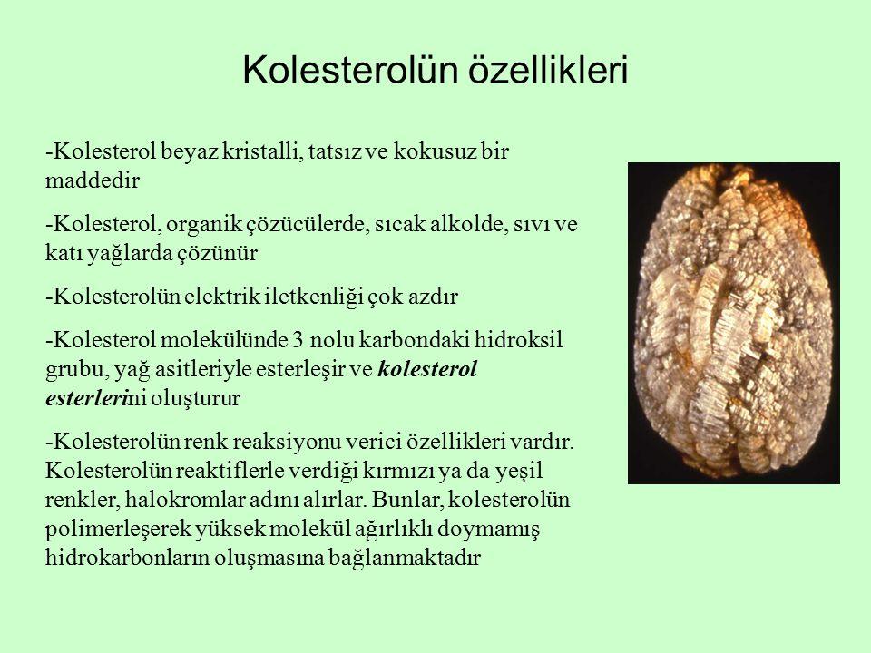 Kolesterolün özellikleri -Kolesterol beyaz kristalli, tatsız ve kokusuz bir maddedir -Kolesterol, organik çözücülerde, sıcak alkolde, sıvı ve katı yağlarda çözünür -Kolesterolün elektrik iletkenliği çok azdır -Kolesterol molekülünde 3 nolu karbondaki hidroksil grubu, yağ asitleriyle esterleşir ve kolesterol esterlerini oluşturur -Kolesterolün renk reaksiyonu verici özellikleri vardır.