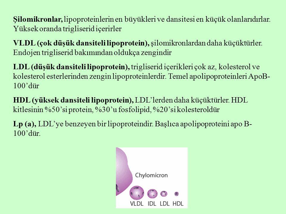 Şilomikronlar, lipoproteinlerin en büyükleri ve dansitesi en küçük olanlarıdırlar. Yüksek oranda trigliserid içerirler VLDL (çok düşük dansiteli lipop