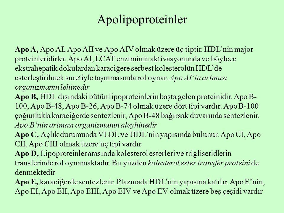Apolipoproteinler Apo A, Apo AI, Apo AII ve Apo AIV olmak üzere üç tiptir. HDL'nin major proteinleridirler. Apo AI, LCAT enziminin aktivasyonunda ve b