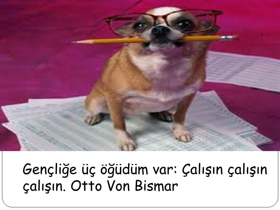 Gençliğe üç öğüdüm var: Çalışın çalışın çalışın. Otto Von Bismar