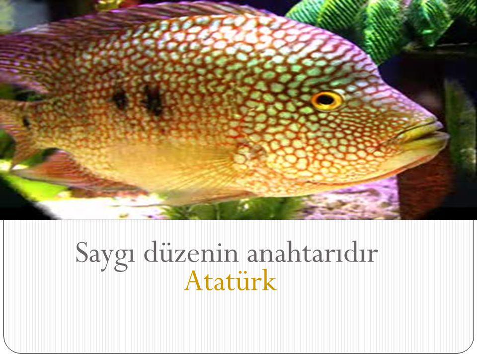 Saygı düzenin anahtarıdır Atatürk
