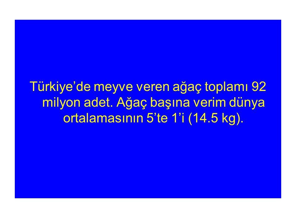 Türkiye'de meyve veren ağaç toplamı 92 milyon adet.