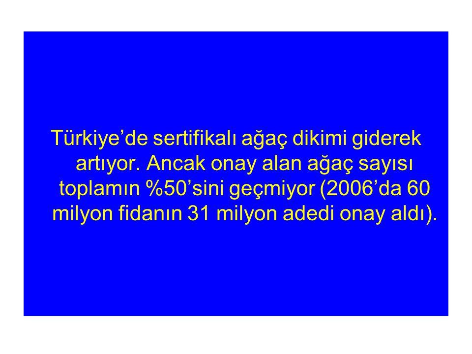 Türkiye'de sertifikalı ağaç dikimi giderek artıyor.
