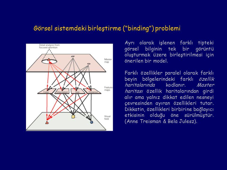 Görsel sistemdeki birleştirme ( binding ) problemi Ayrı olarak işlenen farklı tipteki görsel bilginin tek bir görüntü oluşturmak üzere birleştirilmesi için önerilen bir model.