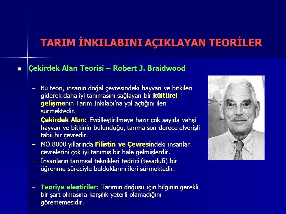 Çekirdek Alan Teorisi – Robert J. Braidwood Çekirdek Alan Teorisi – Robert J. Braidwood –Bu teori, insanın doğal çevresindeki hayvan ve bitkileri gide