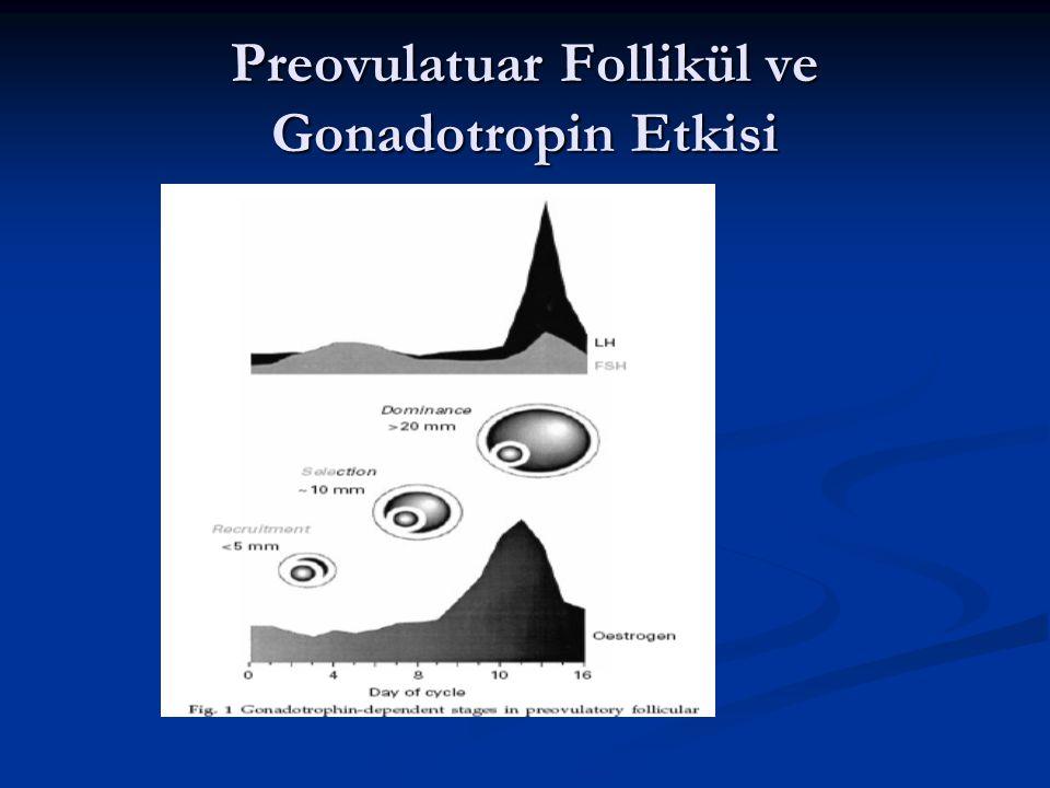 Preovulatuar Follikül ve Gonadotropin Etkisi
