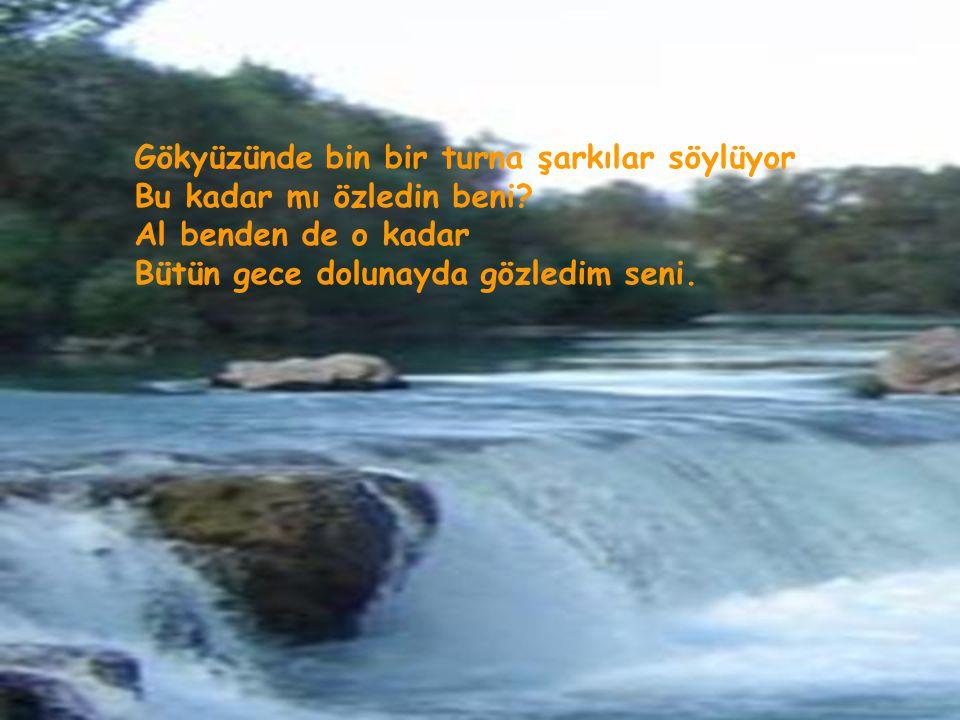 Oyhan Hasan BILDIRKİ