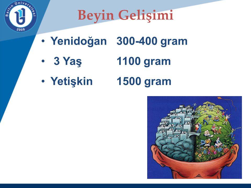 Beyin Gelişimi Yenidoğan 300-400 gram 3 Yaş 1100 gram Yetişkin 1500 gram