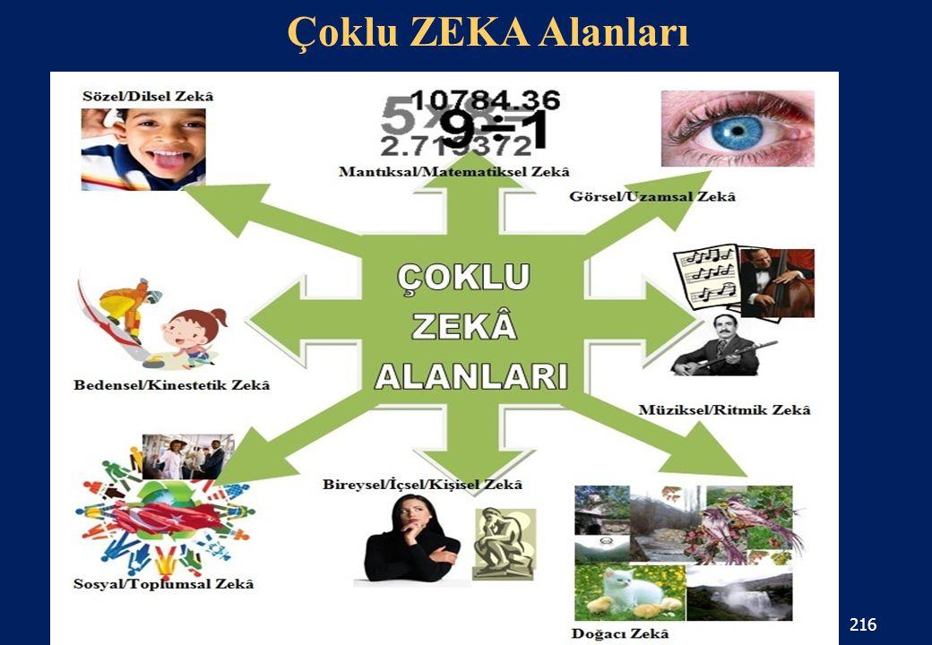 216 Çoklu ZEKA Alanları www.albayrakegitim.com16.04.2015