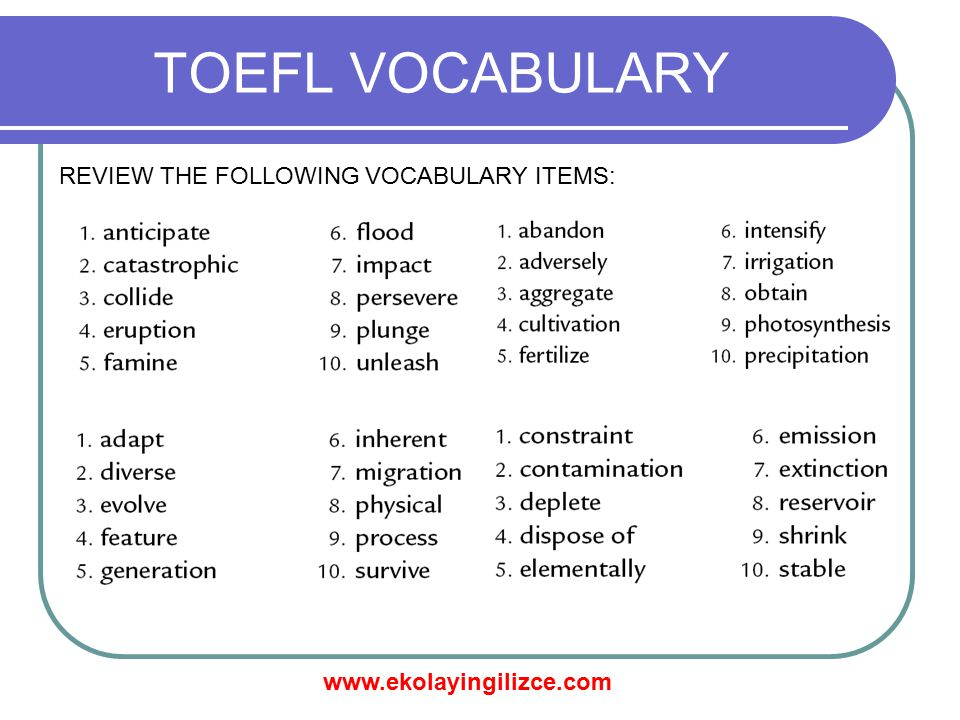 TOEFL VOCABULARY REVIEW THE FOLLOWING VOCABULARY ITEMS: