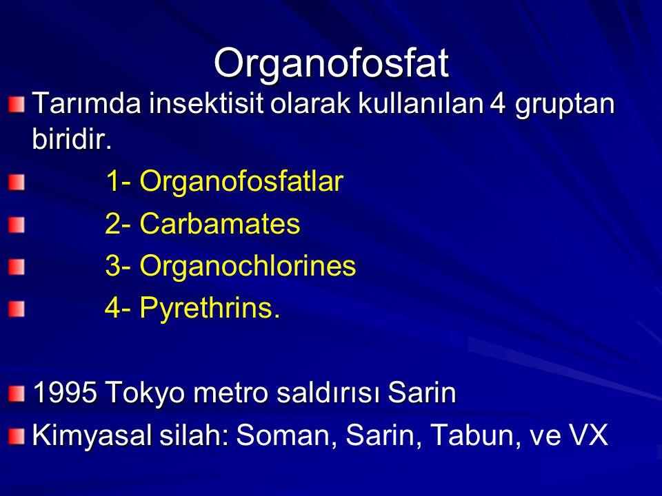 Organofosfat Tarımda insektisit olarak kullanılan 4 gruptan biridir. 1- 1- Organofosfatlar 2- Carbamates 3- Organochlorines 4- Pyrethrins. 1995 Tokyo