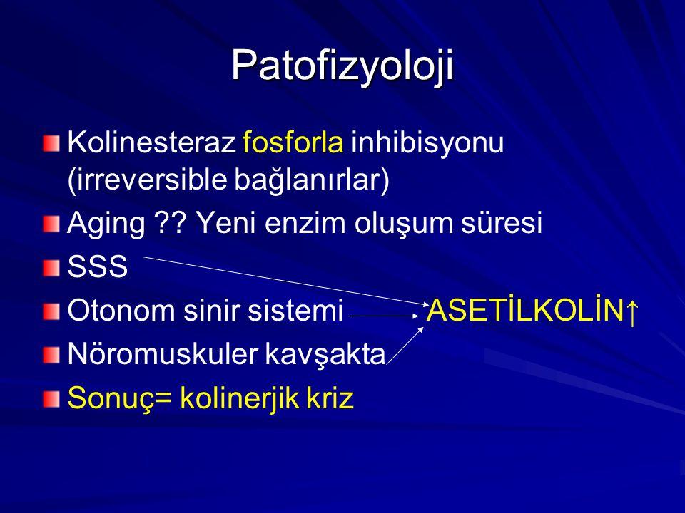 Patofizyoloji Kolinesteraz fosforla inhibisyonu (irreversible bağlanırlar) Aging ?.