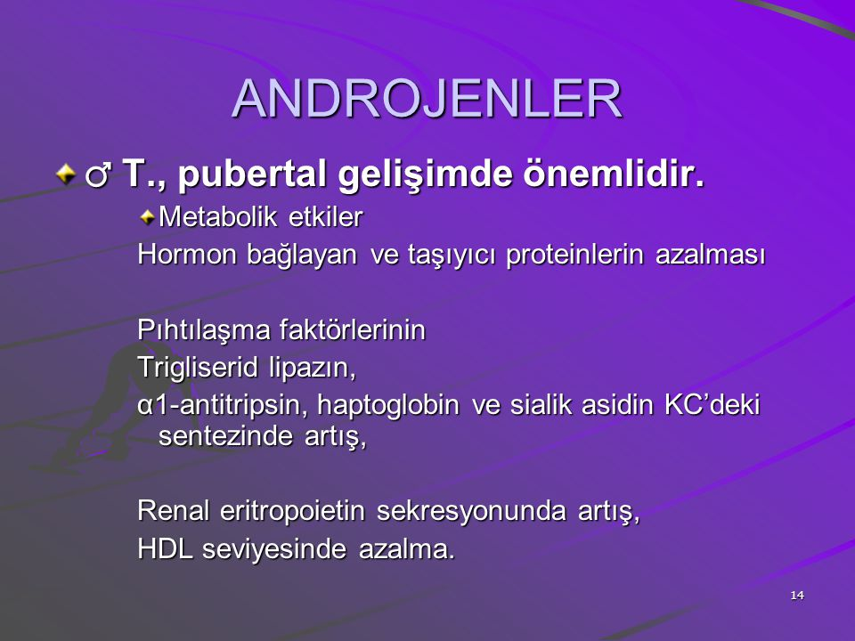 14 ANDROJENLER ♂ T., pubertal gelişimde önemlidir. Metabolik etkiler Hormon bağlayan ve taşıyıcı proteinlerin azalması Pıhtılaşma faktörlerinin Trigli