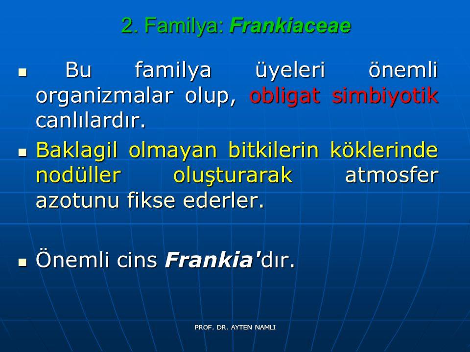 2. Familya: Frankiaceae Bu familya üyeleri önemli organizmalar olup, obligat simbiyotik canlılardır. Bu familya üyeleri önemli organizmalar olup, obli