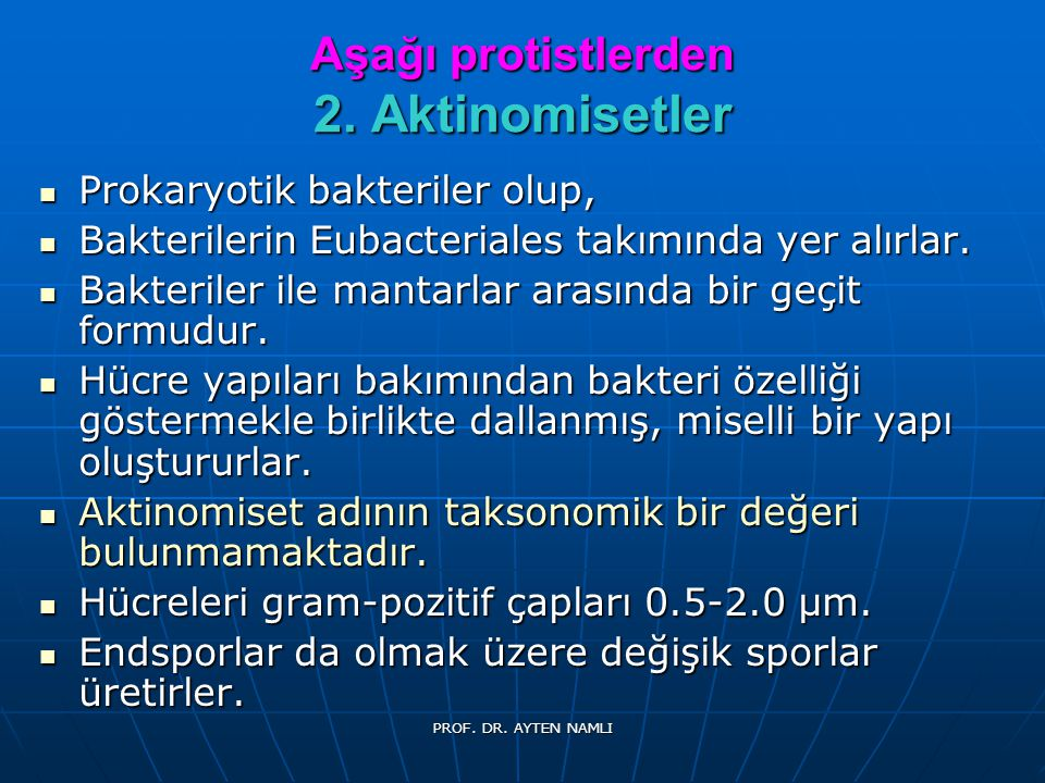 Mycobacterium marinum PROF. DR. AYTEN NAMLI