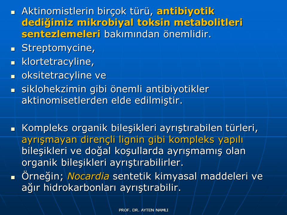Aktinomistlerin birçok türü, antibiyotik dediğimiz mikrobiyal toksin metabolitleri sentezlemeleri bakımından önemlidir. Aktinomistlerin birçok türü, a