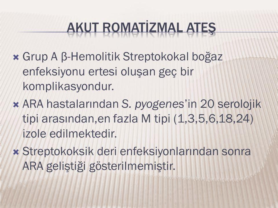  Grup A β-Hemolitik Streptokokal boğaz enfeksiyonu ertesi oluşan geç bir komplikasyondur.  ARA hastalarından S. pyogenes'in 20 serolojik tipi arasın