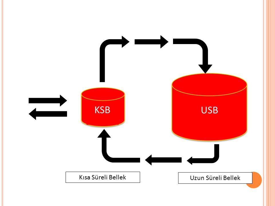 Uzun Süreli Bellek Kısa Süreli Bellek KSB USB