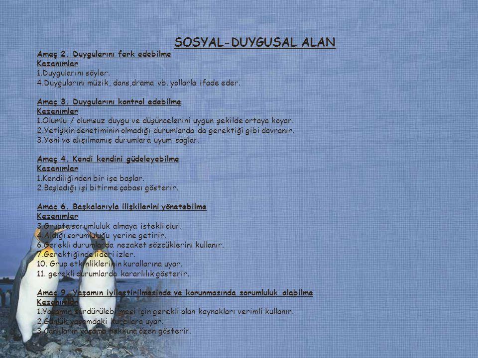 SOSYAL-DUYGUSAL ALAN Amaç 11.Estetik özellikler taşıyan özgün ürünler oluşturabilme Kazanımlar 1.
