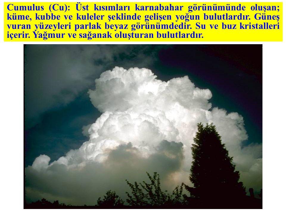 Cumulus (Cu): Üst kısımları karnabahar görünümünde oluşan; küme, kubbe ve kuleler şeklinde gelişen yoğun bulutlardır.