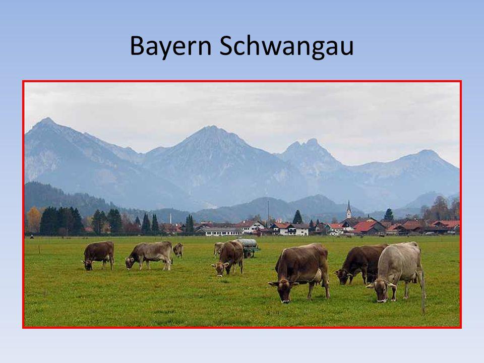 Bayern Schwangau