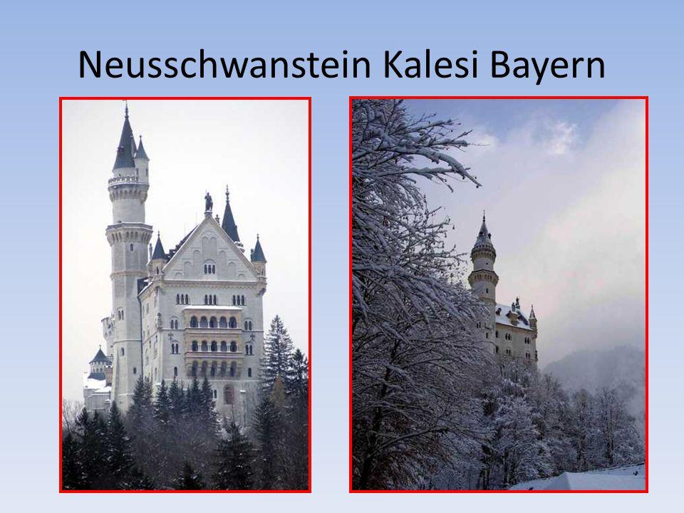 Neusschwanstein Kalesi Bayern