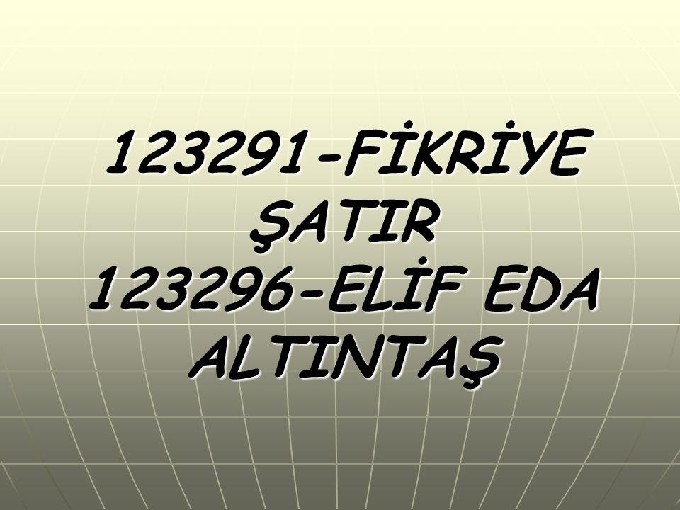 123291-FİKRİYE ŞATIR 123296-ELİF EDA ALTINTAŞ