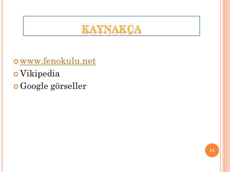 www.fenokulu.net Vikipedia Google görseller 14