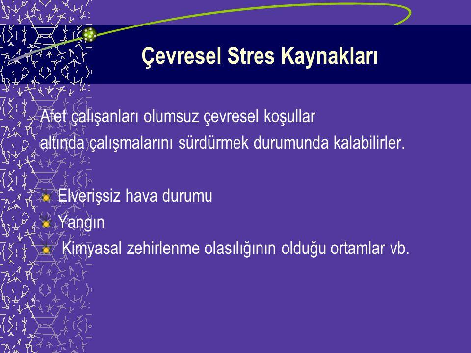 Mesleki Stres Kaynakları Zaman baskısı Aşırı sorumluluk Fiziksel olarak zorlayıcı koşullar Duygusal olarak zorlayıcı koşullar Kaynakların sınırlılığı Yüksek beklentiler