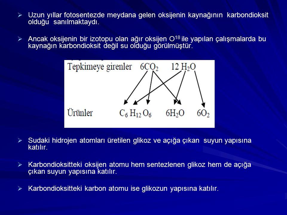 Devirsel Fotofosforilasyon   Işık enerjisi yardımı ile ATP sentezlenmesi olayına Fotofosforilasyon denir.