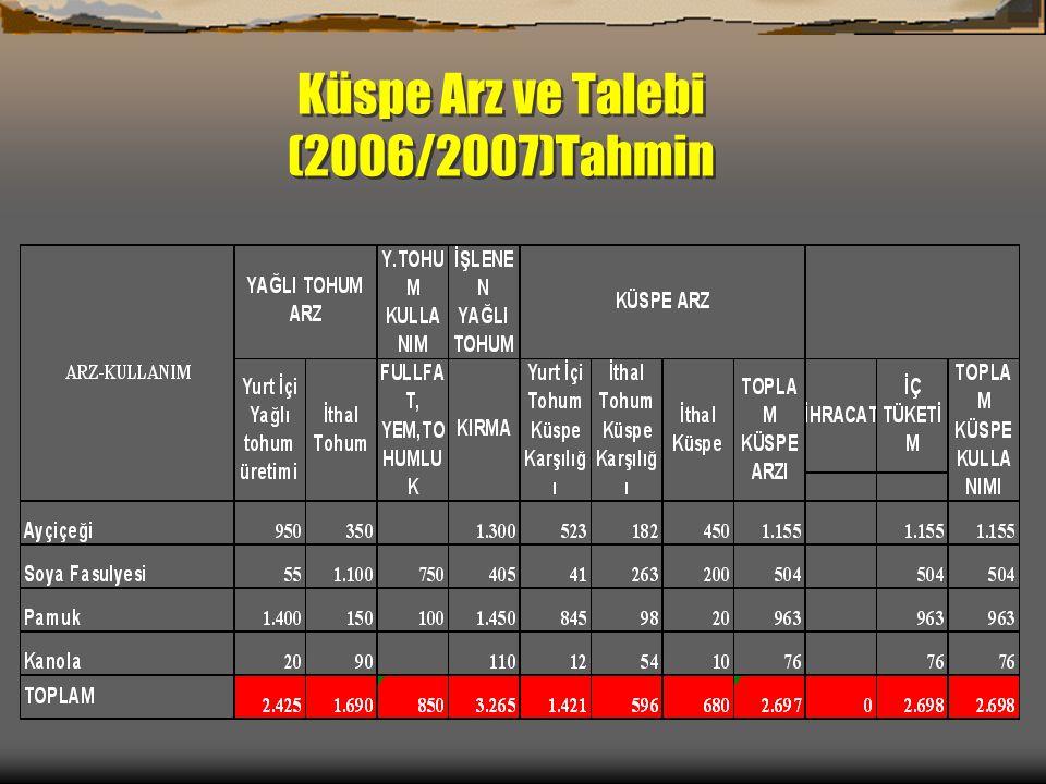 Küspe Arz ve Talebi (2006/2007)Tahmin