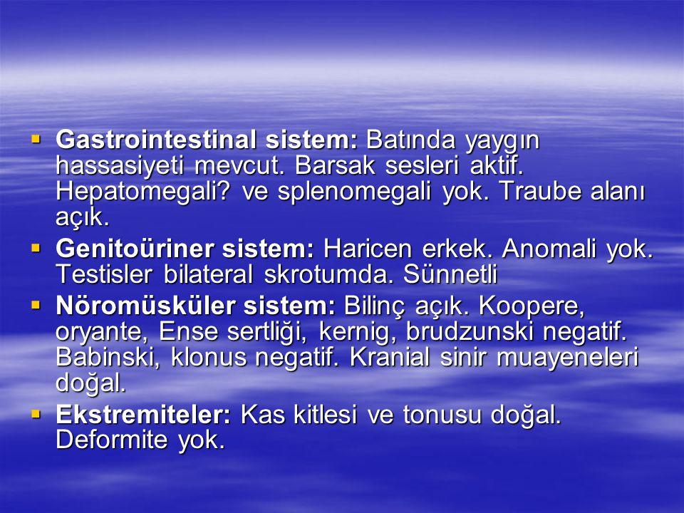  Gastrointestinal sistem: Batında yaygın hassasiyeti mevcut. Barsak sesleri aktif. Hepatomegali? ve splenomegali yok. Traube alanı açık.  Genitoürin