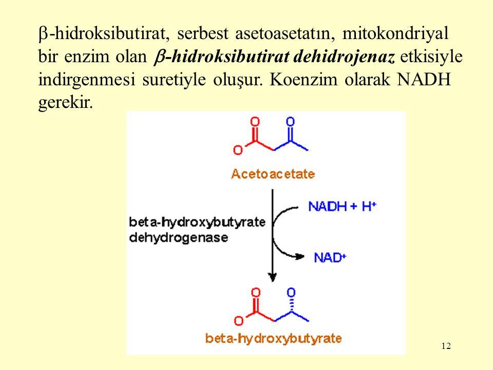 12  -hidroksibutirat, serbest asetoasetatın, mitokondriyal bir enzim olan  -hidroksibutirat dehidrojenaz etkisiyle indirgenmesi suretiyle oluşur. Ko