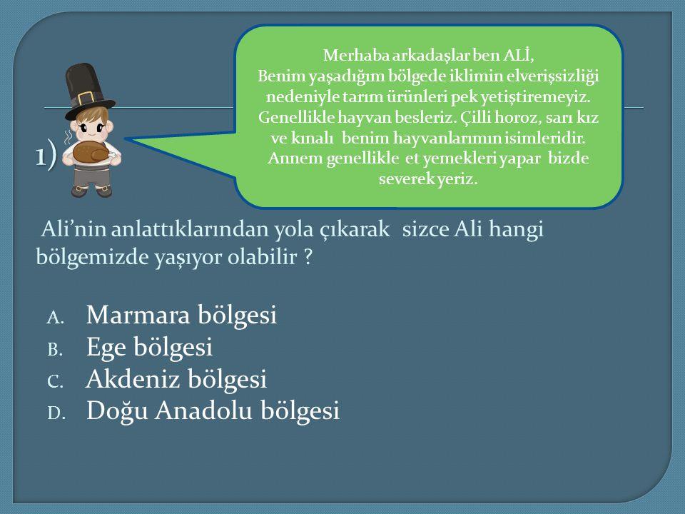 1) 1) Ali'nin anlattıklarından yola çıkarak sizce Ali hangi bölgemizde yaşıyor olabilir ? A. Marmara bölgesi B. Ege bölgesi C. Akdeniz bölgesi D. Doğu