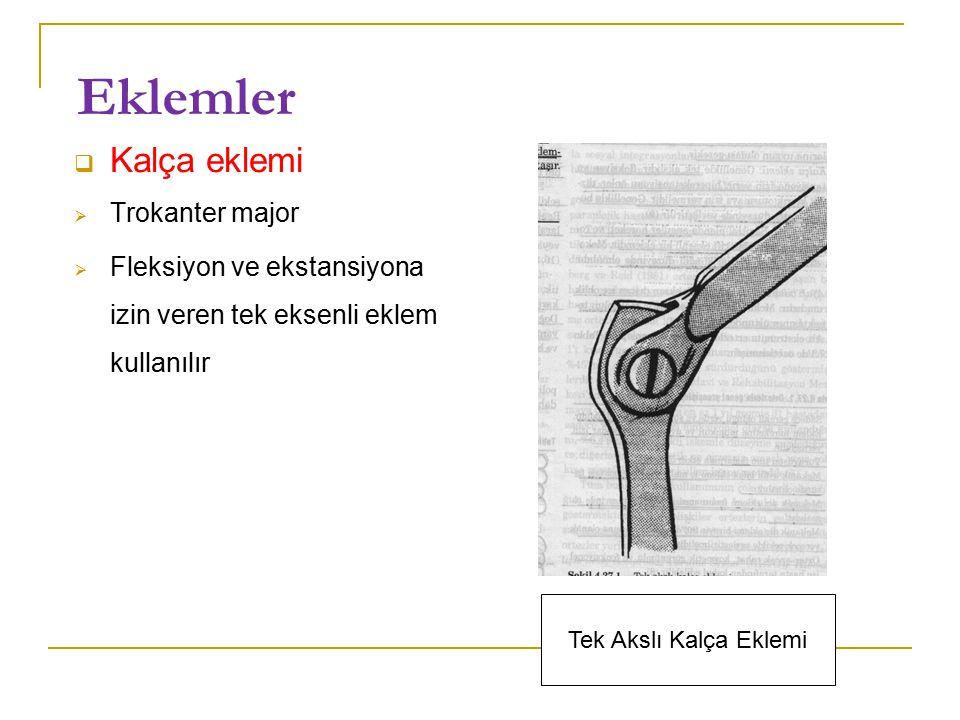 Eklemler  Kalça eklemi  Trokanter major  Fleksiyon ve ekstansiyona izin veren tek eksenli eklem kullanılır Tek Akslı Kalça Eklemi