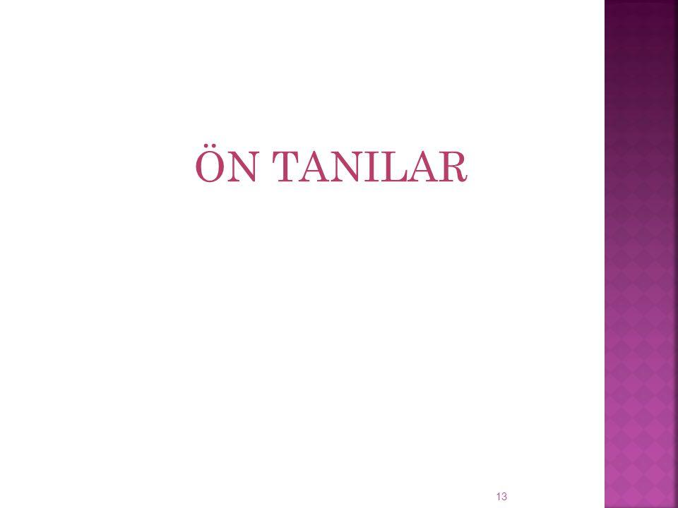 ÖN TANILAR 13