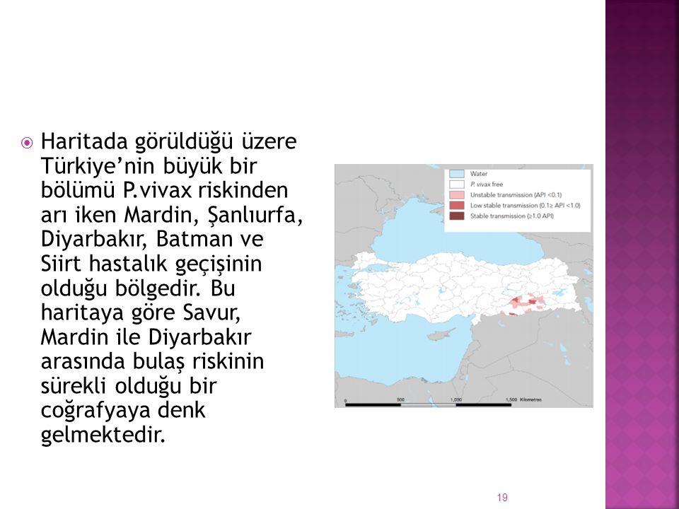  Haritada görüldüğü üzere Türkiye'nin büyük bir bölümü P.vivax riskinden arı iken Mardin, Şanlıurfa, Diyarbakır, Batman ve Siirt hastalık geçişinin o
