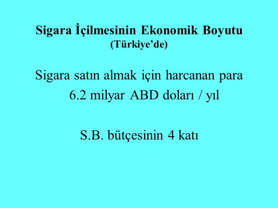 Sigara satın almak için harcanan para 6.2 milyar ABD doları / yıl S.B. bütçesinin 4 katı Sigara İçilmesinin Ekonomik Boyutu (Türkiye'de)