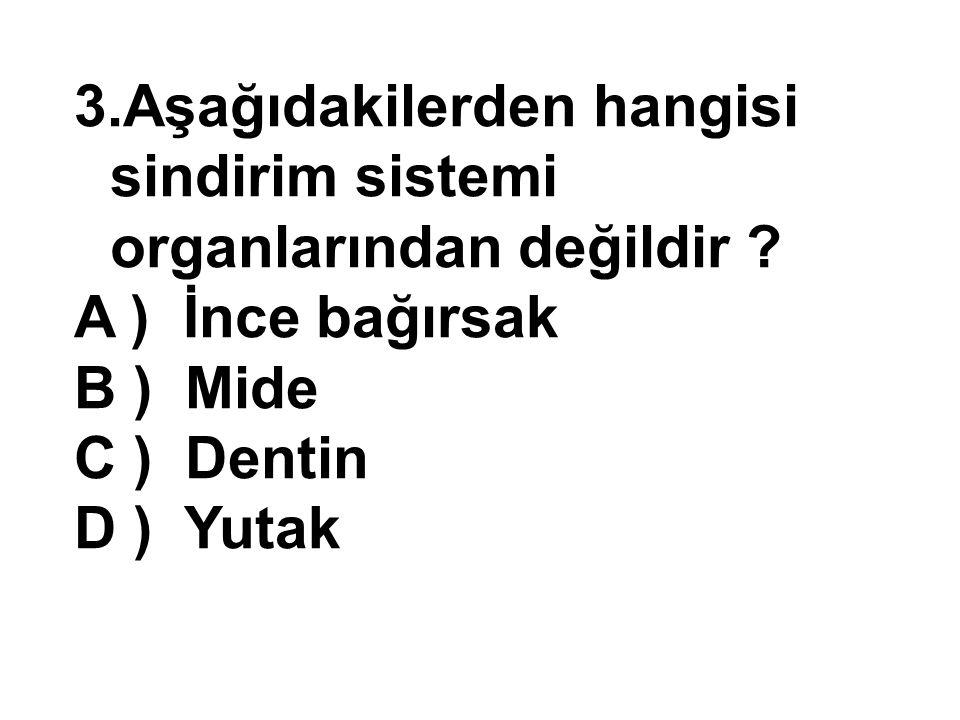 3.Aşağıdakilerden hangisi sindirim sistemi organlarından değildir ? A ) İnce bağırsak B ) Mide C ) Dentin D ) Yutak