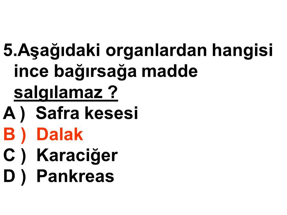 5.Aşağıdaki organlardan hangisi ince bağırsağa madde salgılamaz ? A ) Safra kesesi B ) Dalak C ) Karaciğer D ) Pankreas