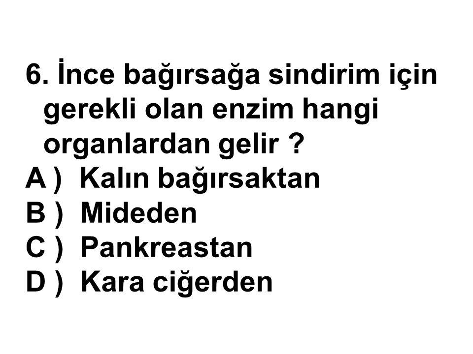 6. İnce bağırsağa sindirim için gerekli olan enzim hangi organlardan gelir ? A ) Kalın bağırsaktan B ) Mideden C ) Pankreastan D ) Kara ciğerden