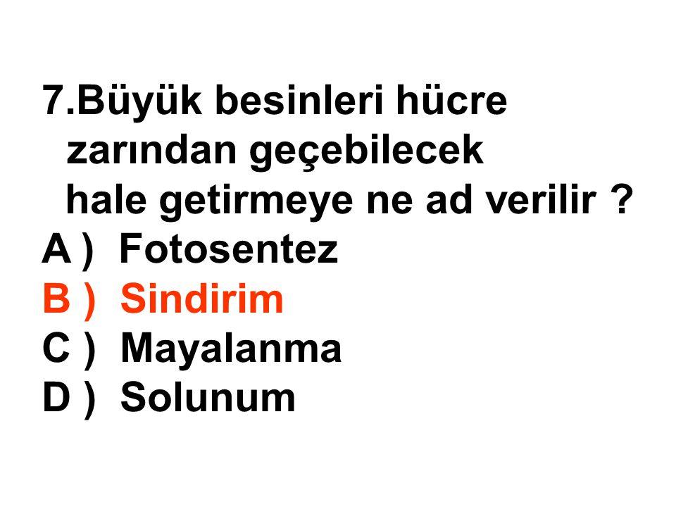 7.Büyük besinleri hücre zarından geçebilecek hale getirmeye ne ad verilir ? A ) Fotosentez B ) Sindirim C ) Mayalanma D ) Solunum
