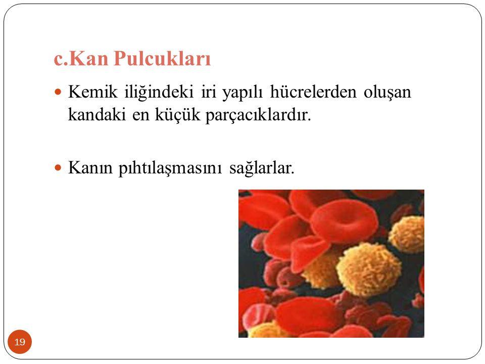 c.Kan Pulcukları 19 Kemik iliğindeki iri yapılı hücrelerden oluşan kandaki en küçük parçacıklardır. Kanın pıhtılaşmasını sağlarlar.