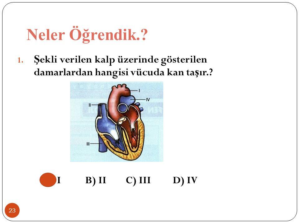 Neler Öğrendik.? 23 1. Ş ekli verilen kalp üzerinde gösterilen damarlardan hangisi vücuda kan ta ş ır.? A) I B) II C) III D) IV