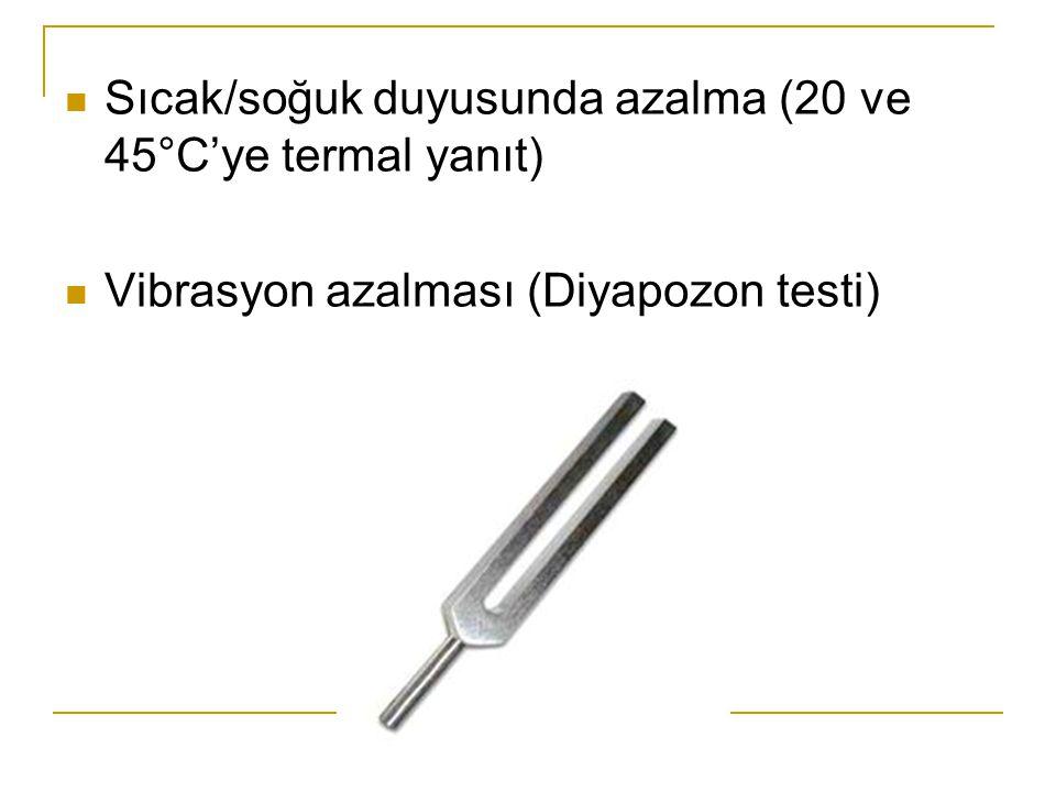 Sıcak/soğuk duyusunda azalma (20 ve 45°C'ye termal yanıt) Vibrasyon azalması (Diyapozon testi)