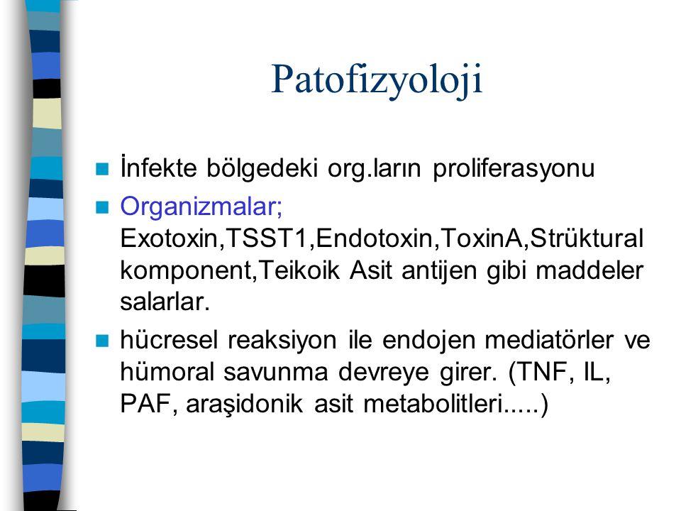 Patofizyoloji İnfekte bölgedeki org.ların proliferasyonu Organizmalar; Exotoxin,TSST1,Endotoxin,ToxinA,Strüktural komponent,Teikoik Asit antijen gibi maddeler salarlar.